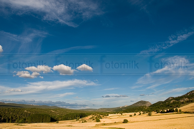 Valle de Tabladillo. Cultivo de cereal, bosque y cielo.